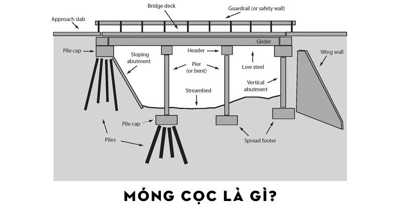 mong-coc